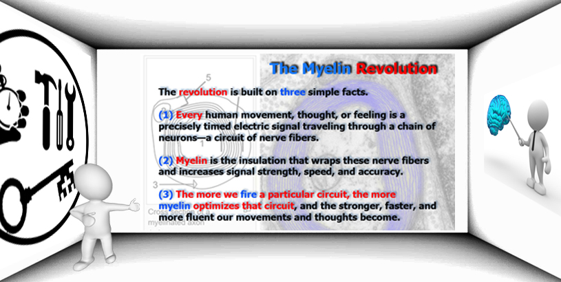 The Myelin Model – A Piece of Genius By Author Daniel Coyle